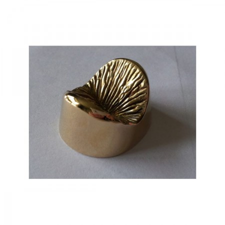 solid-bronze-anus-2